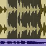 Selection Audio