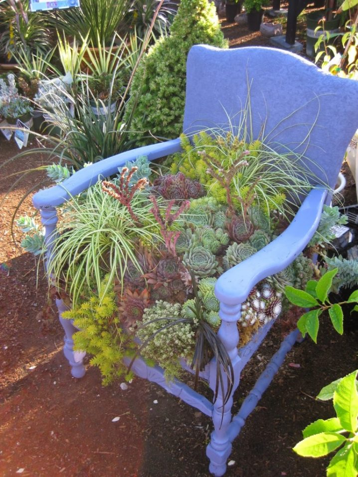 Grow Vertical Garden