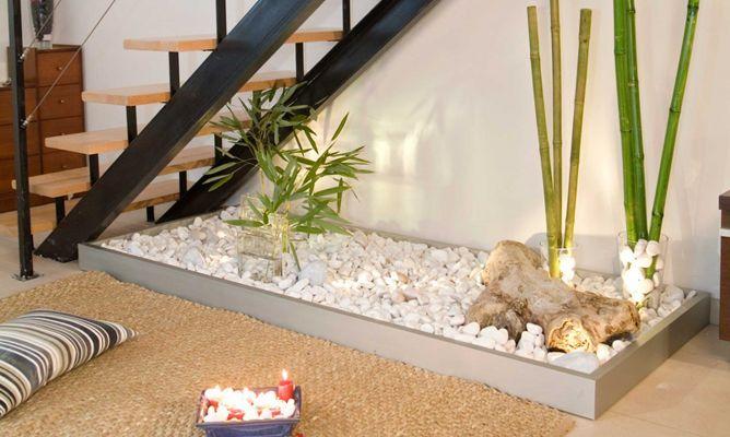 Small Indoor Plants Low Maintenance