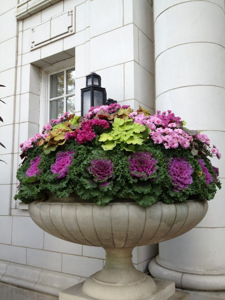 Large Patio Pots And Planters