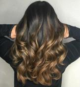 Brown Ombre Bayalage