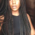 15+ Micro Braids Styles Intended For Single Braids Styles