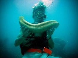 Y'a des gros phallus © Topich