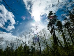 Sun is shining © Sandy