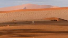 Namibia-47