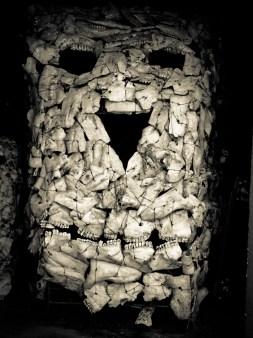 Crâne en crânes