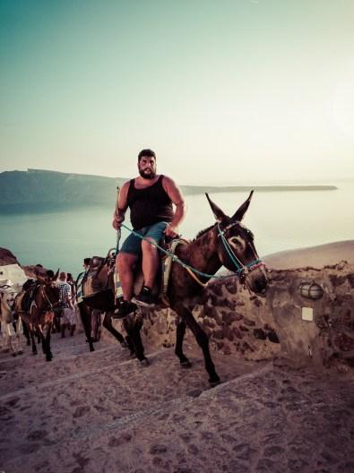 Gordito on the Donkey