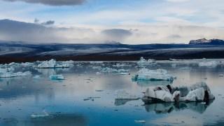 Le Lac polaire de Jökulsárlón III