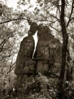 Le bois de Païolive © Topich