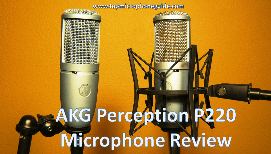 AKG Perception P220 Microphone