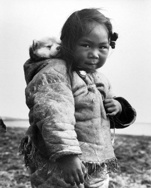 Маленькая эскимоска и ее хаски, 1949.