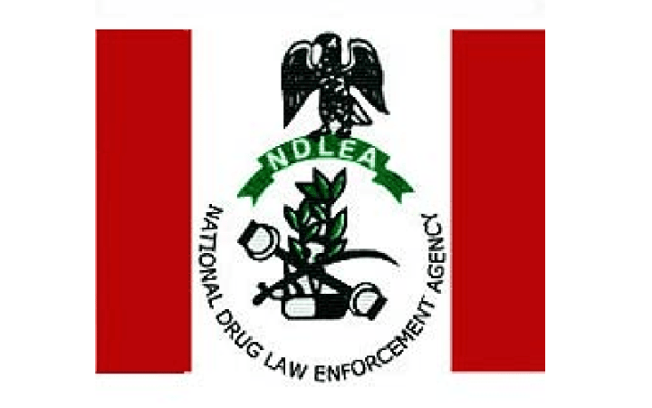 www.ndlea.gov.ng