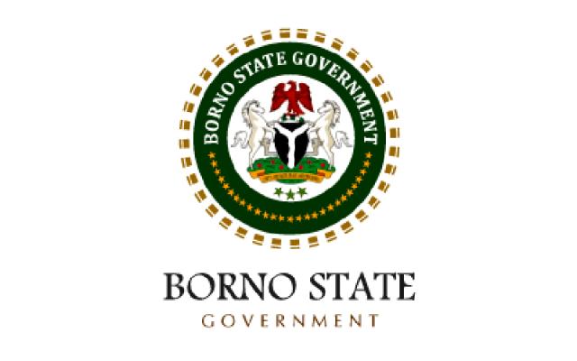 Borno State Government Recruitment