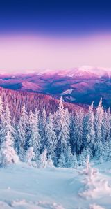 Christmas Wallpapers for iPhone - Best C