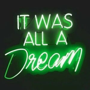 Details about It Was All A Dream Green Neon L