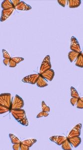 butterfly wallpaper  discovered by ✰ me ✰