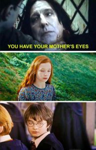 17 Harry Potter Memes That Are