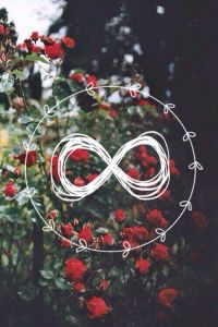 Image about flowers in ∞Infinity∞ by Ver