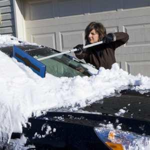 Snow Joe SJBLZD