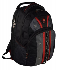 SwissGear The Valve Travel Backpack