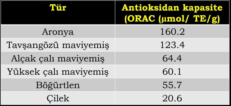 Aronya ve Değişik meyve türlerinde antioksidan kapasitesi