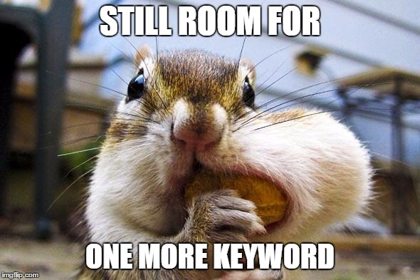 A Squirrel Stuffs a Nut into Its Cheek to Symbolize Keyword Stuffing in Content Marketing