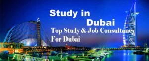 Top Overseas Education Consultancy For Dubai In Hyderabad