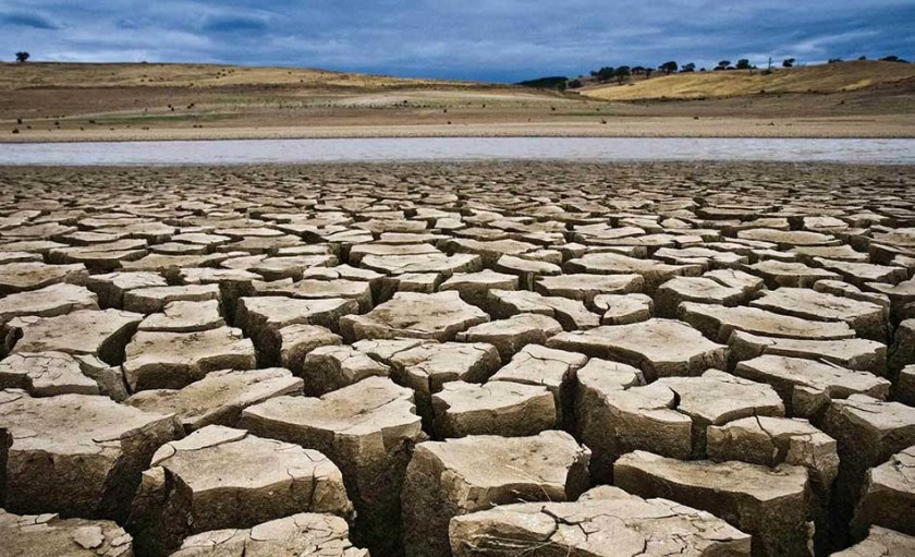 Top Three Effects of Global Warming Around the World