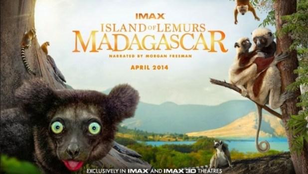 island-of-lemurs-madagascar