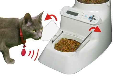 Ten of The Very Best Automatic Cat Feeders You Can Get On Amazon