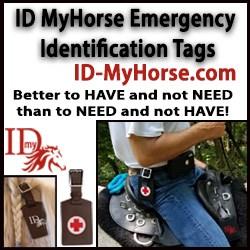 ID MyHorse 250