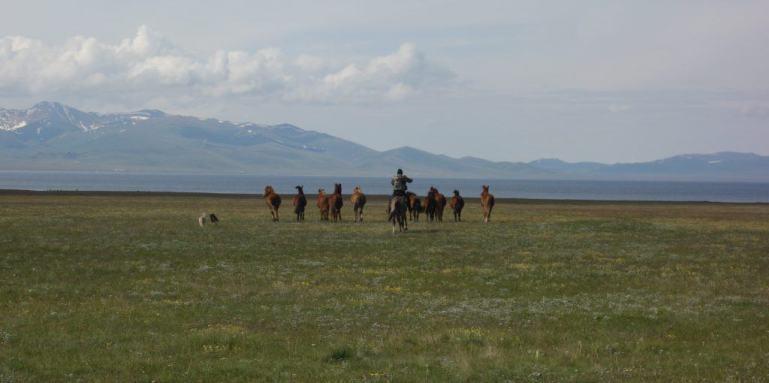Horse riders at Lake Song-Kul, Kyrgyzstan