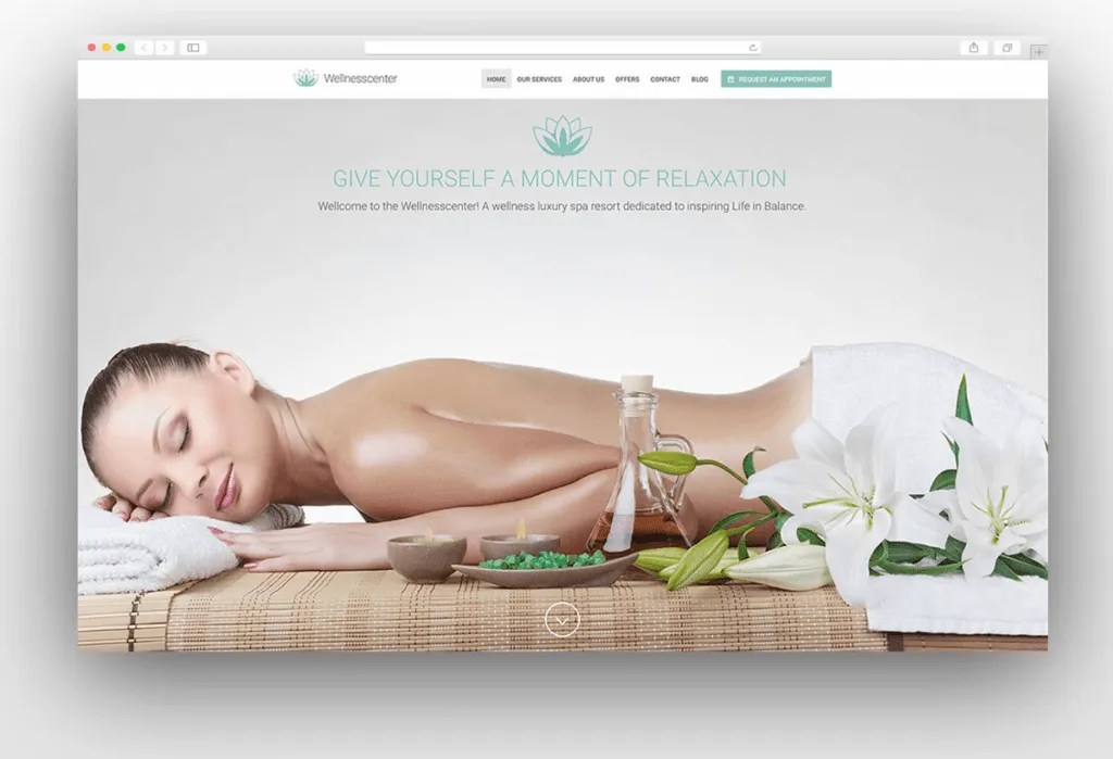 Best 3 Wellness Wordpress Themes -