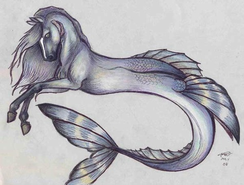 Hippocamp by Who Stole My Name on deviantArt