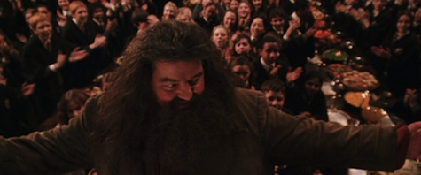 Harry Potter and the Chamber of Secrets film, Hagrid