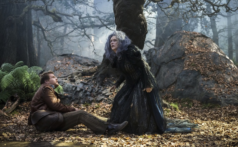 Into the Woods, Baker, Witch