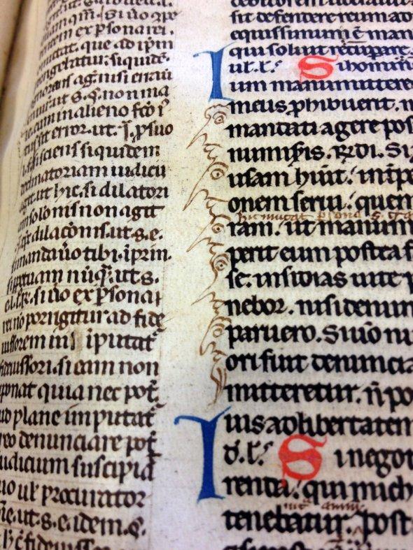medieval books doodles