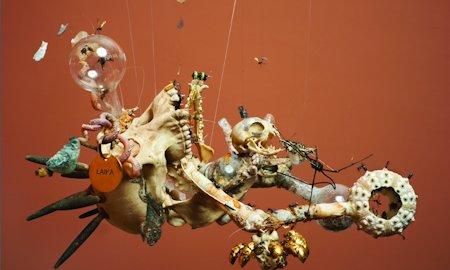 Tessa Farmer's artwork for The Wasp Factory