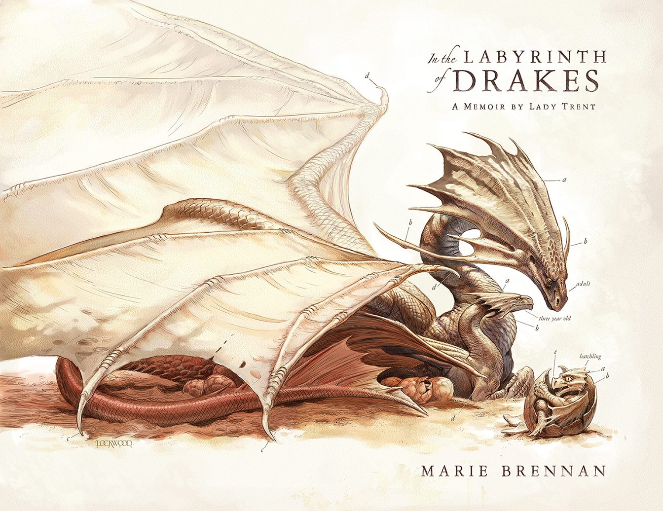 Todd Lockwood In the Labyrinth of Drakes Marie Brennan