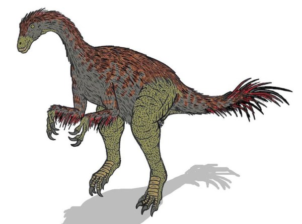Accepting the award ins Enigmosaurus' cousin, Alxasaurus