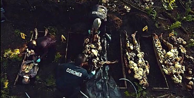 "Hannibal Mushroom Garden  ""Amuse-Bouche"""