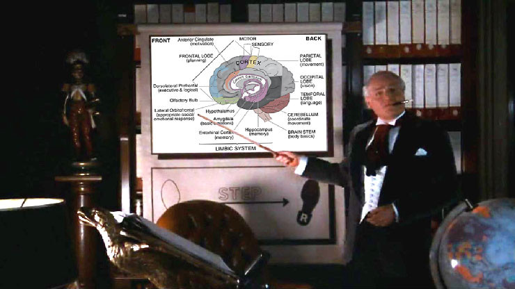 Rocky Horror Picture Show Time Warp brain diagram