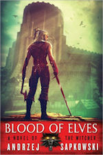 bloodelves-witcher