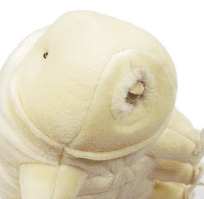 Tardigrade Plush Detail