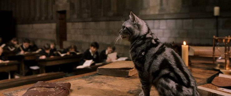 potter-mcgonagall06
