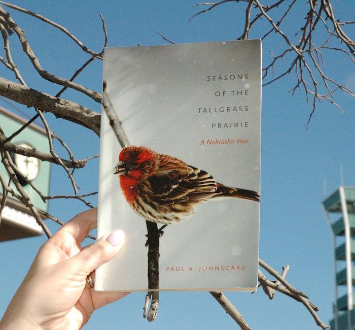 Bird Bookface