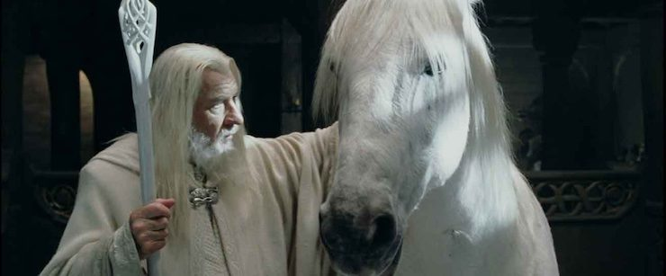 lotr-shadowfax-gandalf