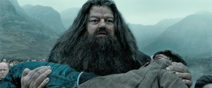 Hagrid carries Harry's body