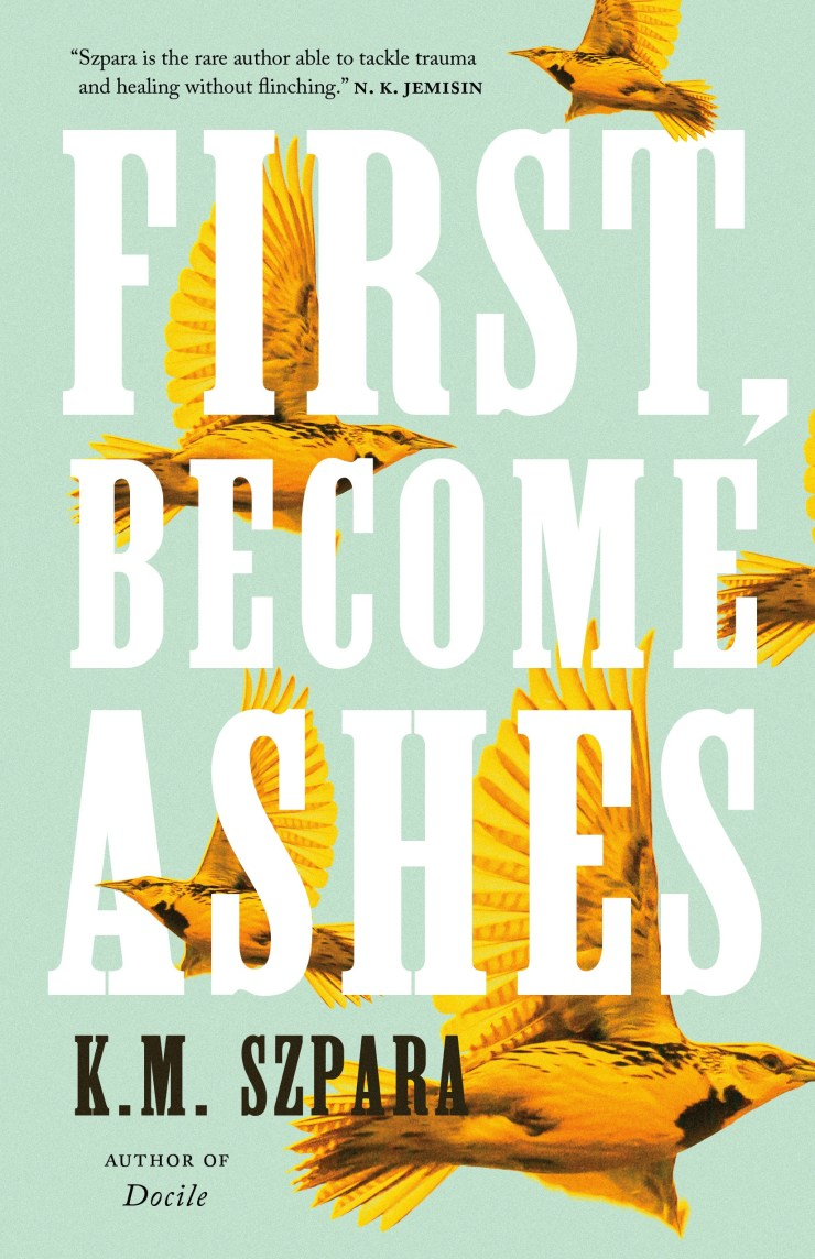 First, Become Ashes book cover