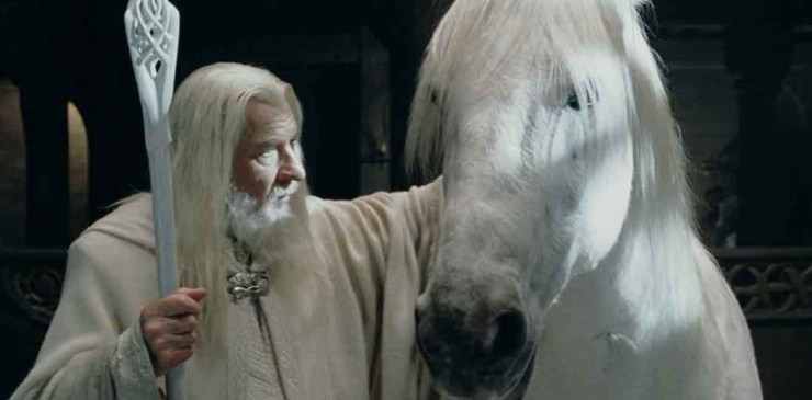 Blog Post Featured Image - The Taming of Felaróf, Father of Horses in The Lord of the Rings